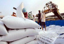 Nghị định xuất khẩu gạo mới được đề ra