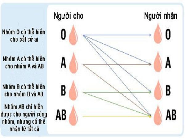 Các nhóm máu hiếm hiện nay