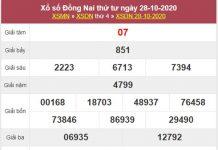 Phân tích XSDNA 4/11/2020 chốt lô Đồng Nai cùng chuyên gia