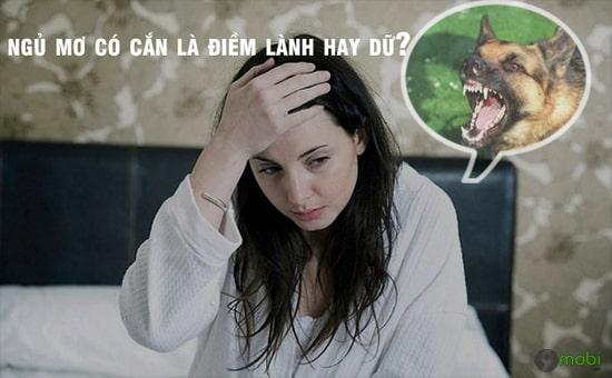 Nằm ngủ mơ thấy bị chó cắn báo hiệu điềm gì? Đánh con gì